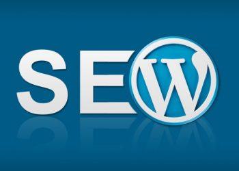 Sıfırdan WordPress Site Nasıl Kurulur ve Temel Seo Kriterleri Nelerdir?