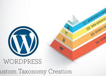 WordPress'te Özel Taksonomilere Özel Meta Alanları Ekleme