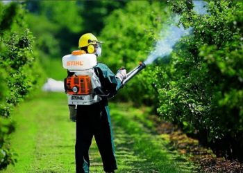 Bahçelievler Böcek İlaçlama Şirketleri