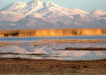 Sultan Sazlığı Kuş Cenneti Nerededir?