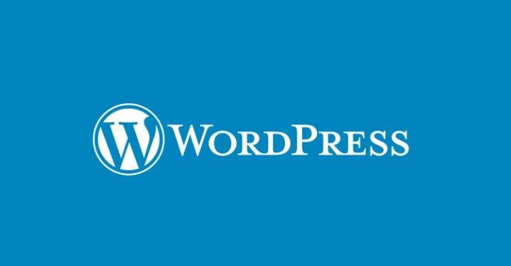 WordPresste Yazıya Nasıl Buton Eklenir?
