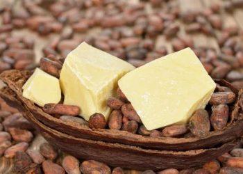 Kakao Yağının Cilde Faydaları Nelerdir?