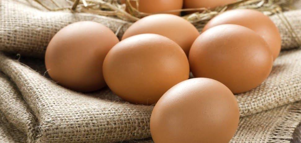Sağlıklı Tavuk Yumurtası Nasıl Olur?