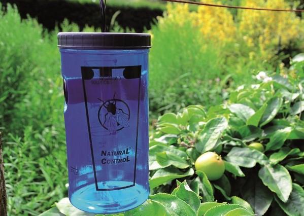 Sivrisinek Kovucu Bitkiler